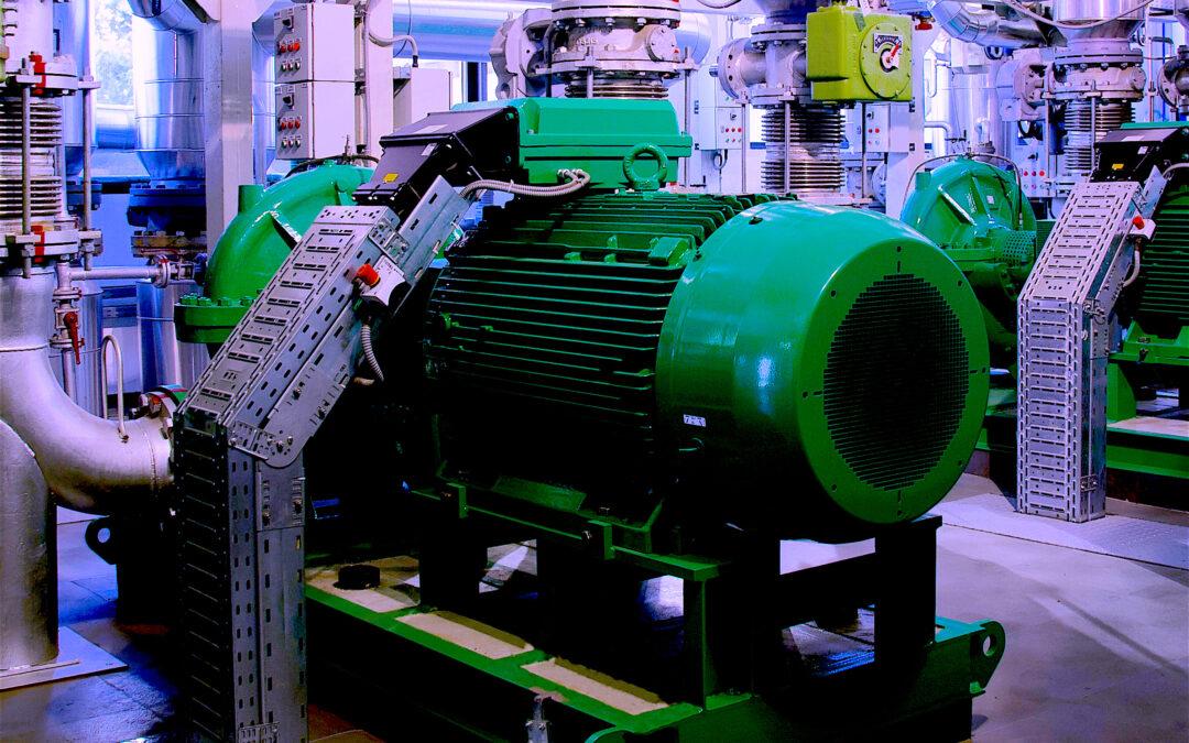 Regarding Reliability of Large Electric Motors: A Data Mind-Bender