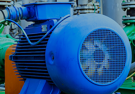 Regarding Reliability of Large Electric Motors: Site and Study Findings Compared
