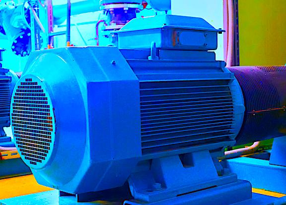 Regarding Reliability of Electric Motors: Annex D in IEEE 43-2013